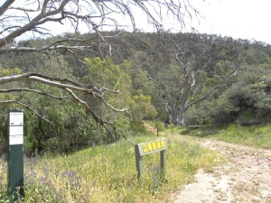 The approach to Mount Brown Conservation Park