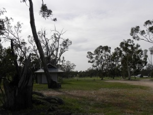 Wonga campground, Wyperfeld National Park