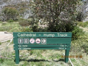 Cathedral - Hump Track