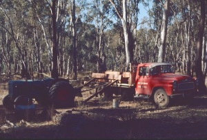 Sleeper cutting in Barmah Forrest July 1972