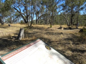 Warby Ranges Ryans Lookout JCD picture