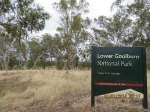Lower Goulburn National Park - Reedy Swamp