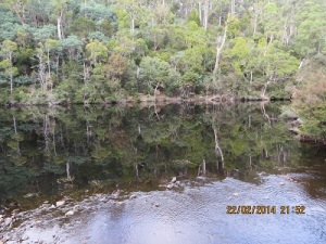 Reflections at a water hole: a river crossing in the Park