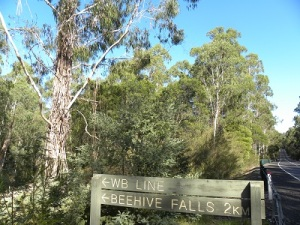 Beehive Falls turn-off at Coopracambra National Park