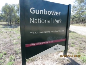 Gunbower National Park