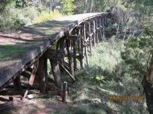 Historic trestle bridge on Cudgewa line