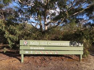 Kelly Hill Conservation Park