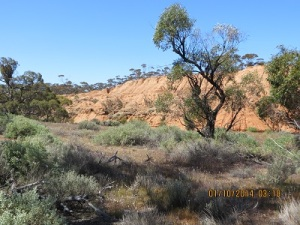 Red cliffs at Redbanks Conservation Park