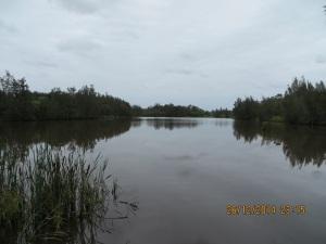 Longneck Lagoon Scheyville National Park