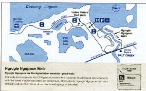 Map of Coorong Walk from 'The Tatler'