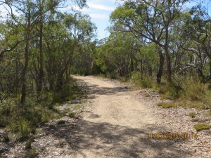 Approaching Gate 8 on Cup Gum Track