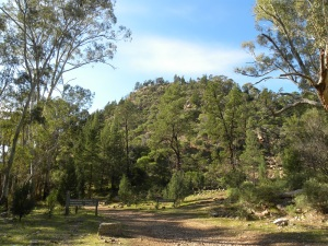 Mount Remarkable National Park - Mambray Creek JCD photo