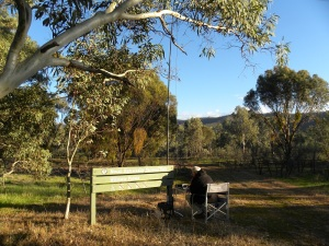 Mount Remarkable National Park: Winowie Forest