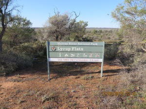 Murray River National Park Lyrup Flats section