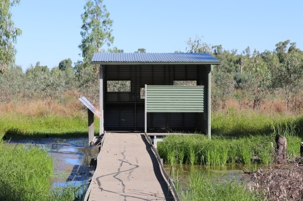 birdhide-at-murrumbidgee-np