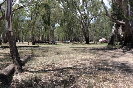 campground-at-bramah-np