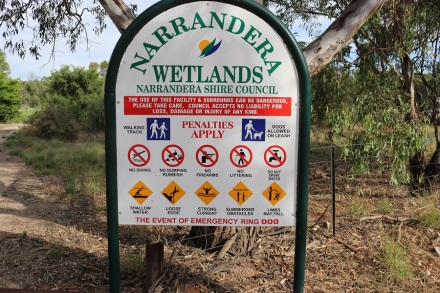 narrandera-wet-lands