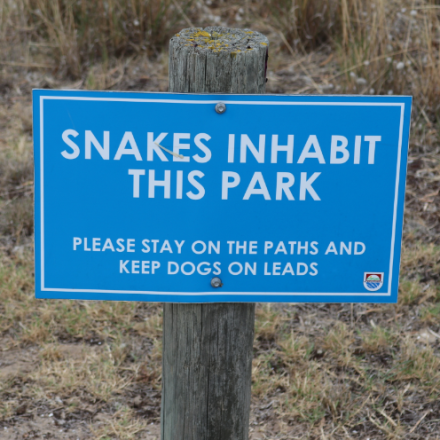Warning about snakes