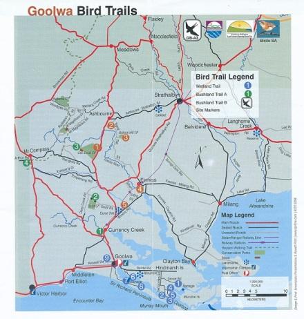 Goolwa Bird Trails