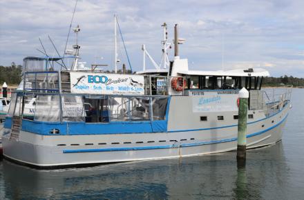 Eco Cruise