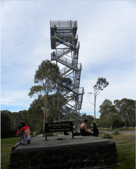 Mount Donna Buang Lookout