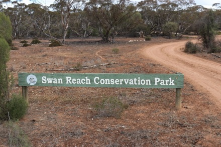 Swan Reach CP
