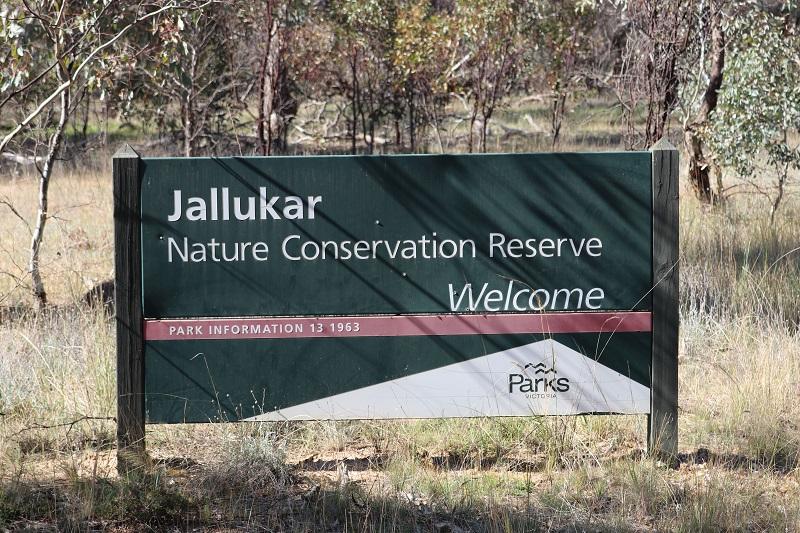 Jallikar NCR blog